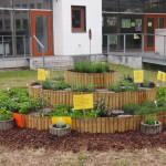Kräutergarten für die Wilhelm-Leuschner-Schule