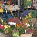 18. Kreis-Bauernmarkt Groß-Gerau