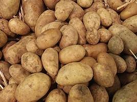 LEH hat viel zu spät auf regionales, deutsches Gemüse und Kartoffeln umgestellt