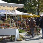 Bauernmarkt in Darmstadt