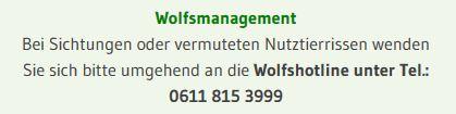 """Deutschlandweite """"Wolfsnachtwachen"""""""