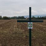Grüne Kreuze schaffen Aufmerksamkeit!